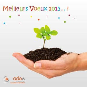 meilleurs voeux 2015 agence adeo communication
